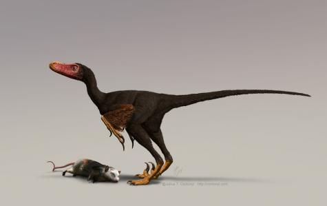 Birds inherited strong sense of smell from dinosaurs (w/ video)