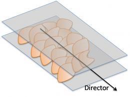 Giant flakes make graphene oxide gel