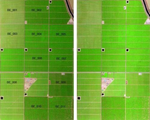 NASA studies vegetation canopy water content, soil moisture