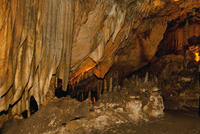 Researcher Finds Key to Ancient Weather Patterns in Florida's Caves