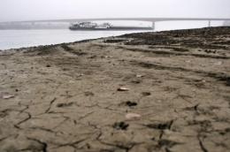 Severe drought has hit Europe's second largest river, the Danube, turning it into a navigation nightmare