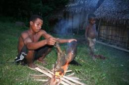 Taking bushmeat off the menu could increase child anemia, study finds