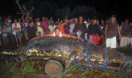 The Australian crocodile's record may be brief after a 6.4-metre beast was trapped in the Philippines