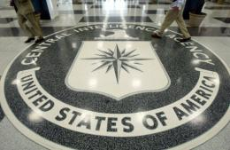 The public website of the US Central Intelligence Agency (CIA) was apparently knocked out of commission by hackers