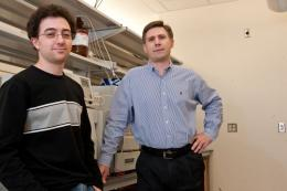 Chemists cram two million nanorods into single cancer cell