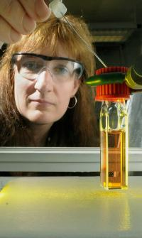 Nanoparticles help scientists harvest light with solar fuels