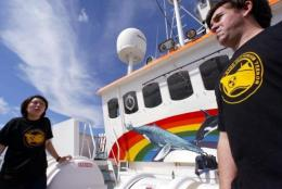 Greenpeace activists stand on the deck of the Greenpeace vessel MV Arctic Sunrise