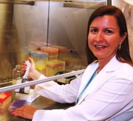 MU researchers pioneer animal diabetes treatment