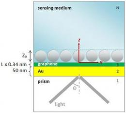 Highly sensitive graphene biosensors based on surface plasmon resonance