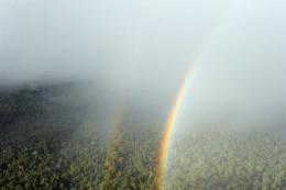 A double rainbow shines thru the rain over the forest in West Kalimantan