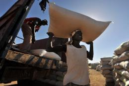 An employee carries a rice bag in Senegal