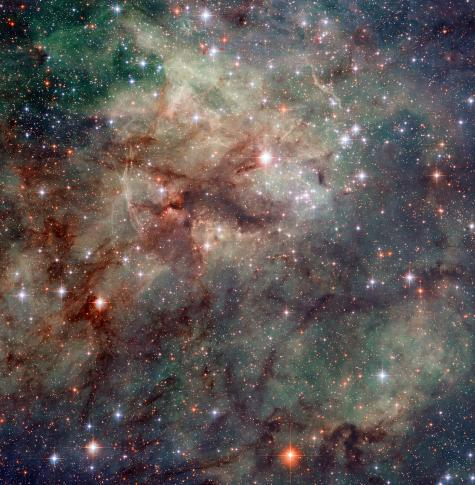 Arachnophobes beware: Hubble snaps close-up of the Tarantula