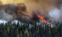Arizona blaze part of new era _ more big wildfires (AP)