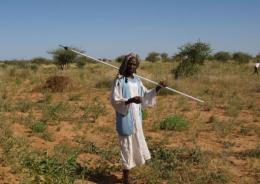 Around 13 million people are believed to live in Sudan's vast woodland savanna, or gum arabic belt