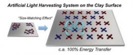 Artificial light-harvesting method achieves 100% energy transfer efficiency