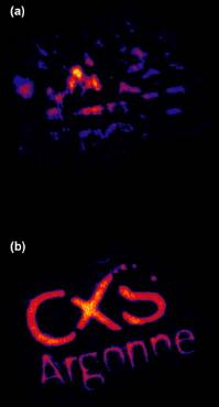 Coherent diffractive imaging in living color