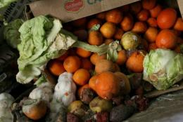European and North American consumers wasted between 95 and 115 kilograms of food every year, according to the FAO