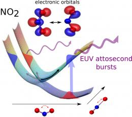 Watching electrons in molecules
