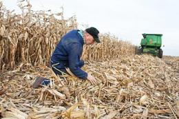 Forage know-how gives Wisconsin farmers an edge in growing biomass