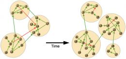 Tinkering withevolution: Ecological implications of modular software networks