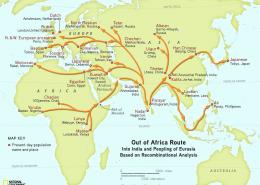 The genographic project confirms humans migrated out of Africa through Arabia