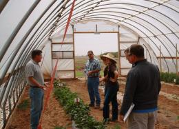 High tunnels, mulch may be the answer to wild High Plains weather