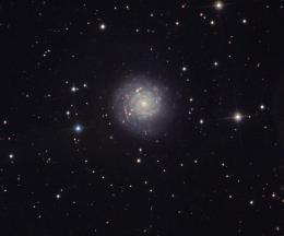 Homeless supernovae