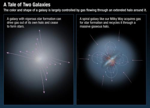 Hubble confirms that galaxies are the ultimate recyclers