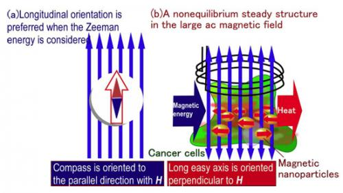 Hyperthermia treatment of cancer using magnetic nanoparticles: First detailed elucidation of heat generation mechanism
