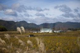 Japan has been on alert for the impact of radiation since March 11 earthquake and tsunami that crippled Fukushima plant