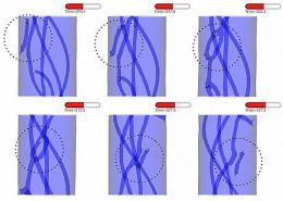 Modeling the Bizarre: Quantum Superfluids