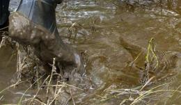 Montana questions Exxon's estimate of oil spilled (AP)