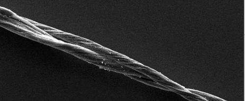 Nanocables light way to the future: Researchers power line-voltage light bulb with nanotube wire