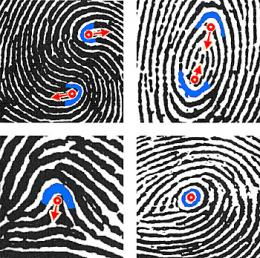 New NIST biometric data standard adds DNA, footmarks and enhanced fingerprint descriptions