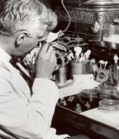 Fleming's fungus still surprising scientists