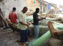 Optimum tax on foreign fishing in Africa protects stocks and domestic fishing