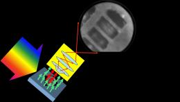 Seeing clearly: 2D nanoscopy achieves direct imaging of nanoscale coherence