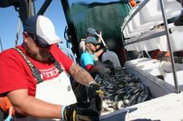 Public-private partnership helps monitor fish populations