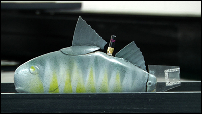 Robotic fish test the waters for safety risks