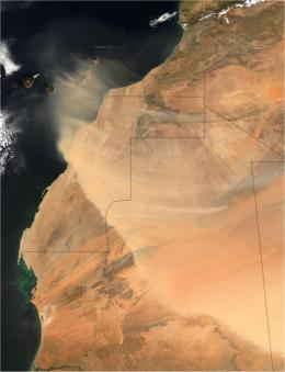 Saharan dust impacts West African monsoon precipitation
