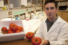 SFU student researches fungi fighting controls