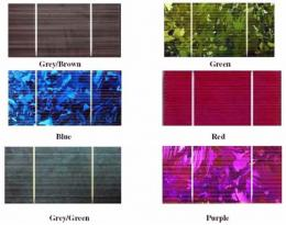 Solar panels released in an array of colors