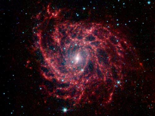 Spitzer Sees Spider Web of Stars
