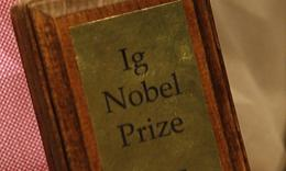 Spoof Nobel prizes were awarded for studies into beetle sex, yawning, the desperation of people dying to urinate