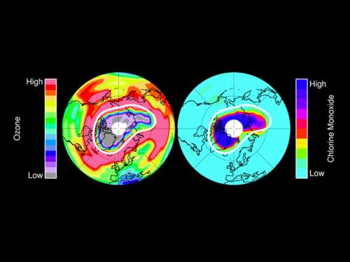 Study of Unprecedented Arctic Ozone Loss