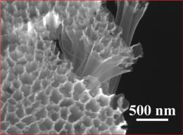 Sulfur in hollow nanofibers overcomes challenges of lithium-ion battery design