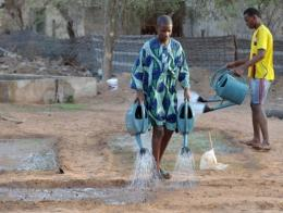 The GGW project in Senegal is being funded almost entirely by the government