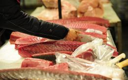 Tuna is on display at New York's main wholesale fish market
