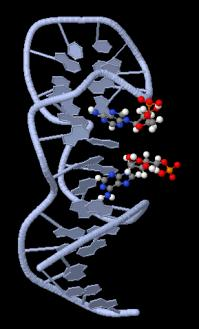 Universal detector made of DNA building blocks