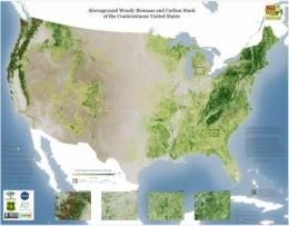 WHRC debuts detailed maps of forest canopy height and carbon stock for the conterminous US